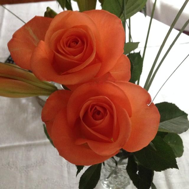 fådda blommor